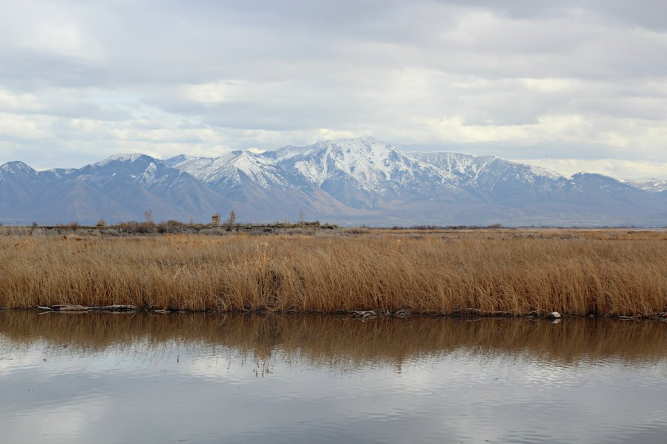 Views on Utah Lake - a stop we made while heading south.